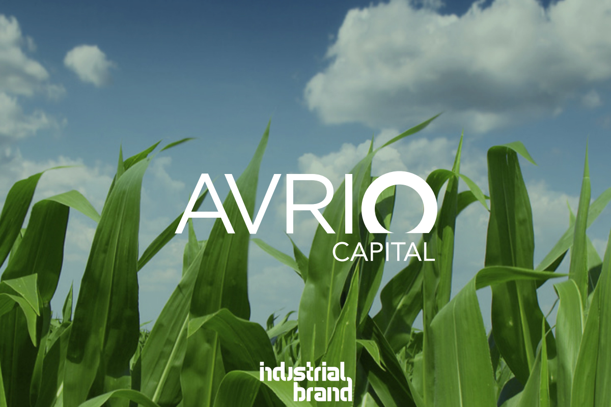 Avrio Capital